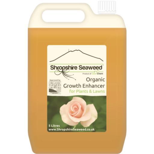Organic Liquid Seaweed Plant Fertilizer - 5L.png